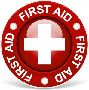 first aid training online in UK
