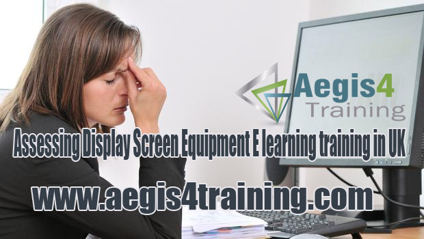 Assessing Display Screen Equipment E learning training in UK
